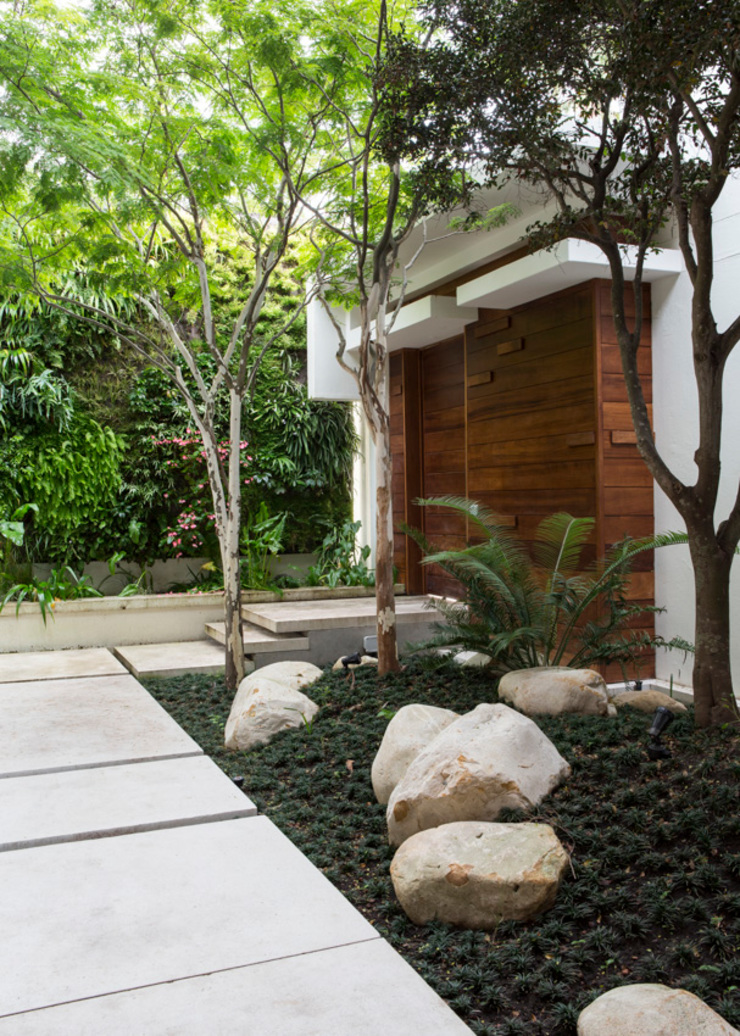 The Entrance Courtyard Modern style gardens by Jenny Mills Architects Modern