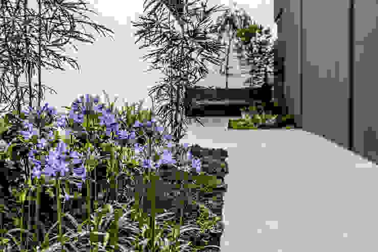 Modern Bahçe 2M Arquitectura Modern