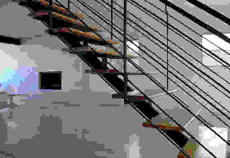 Modern Corridor, Hallway and Staircase by Erika Winters Design Modern