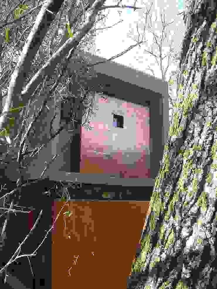 Boshuis, Bloemfontein, Free State Minimalist house by Sm!t Architects Minimalist