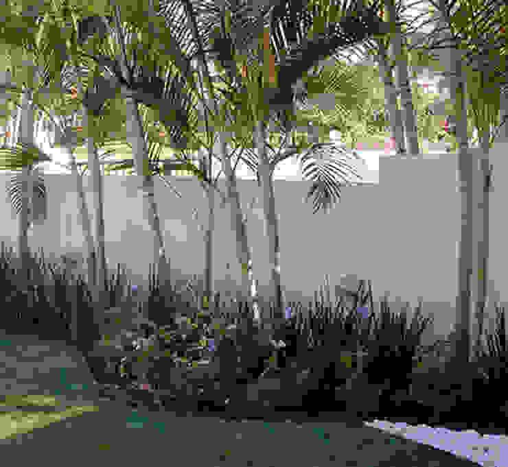 JARDINES PEQUEÑOS Jardines modernos de Tropico Jardineria Moderno