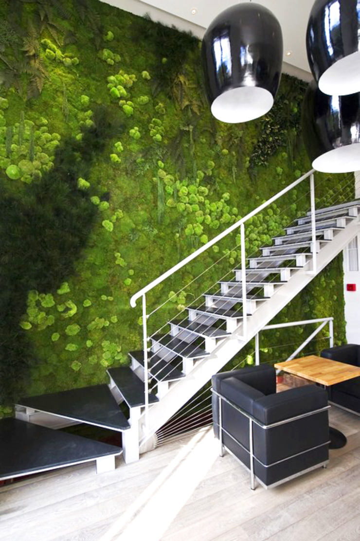 Vorstellung unserer Produkte: Pflanzen- und Moosbilder von styleGREEN Moderner Flur, Diele & Treppenhaus von FlowerArt GmbH | styleGREEN Modern