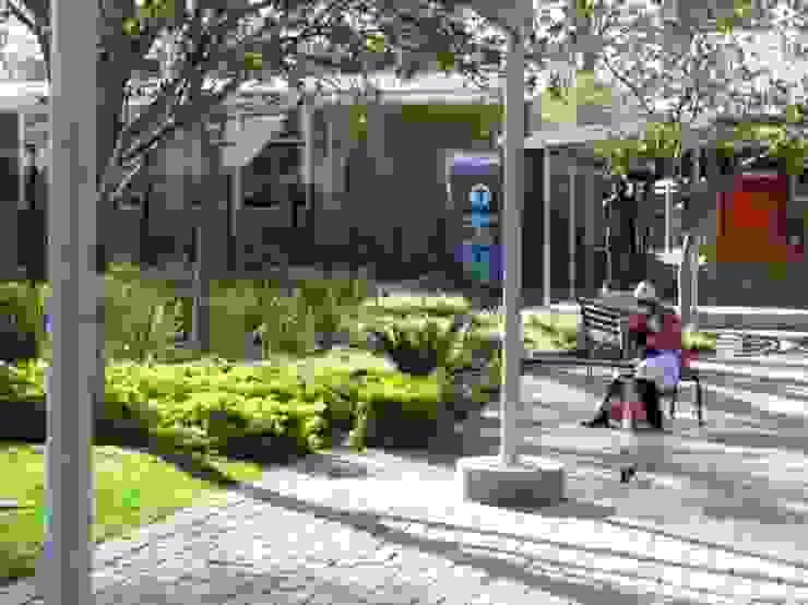 Modimolle Hospital Mohlolo Landscape Architects