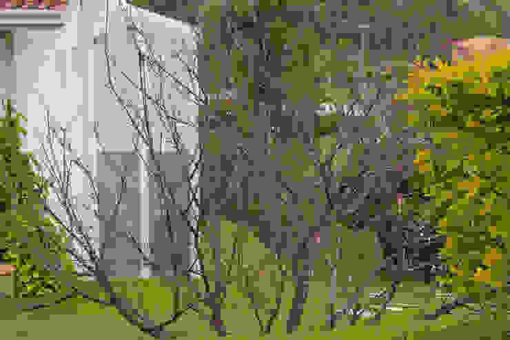 Fachada Casas campestres por IDALIA DAUDT Arquitetura e Design de Interiores Campestre