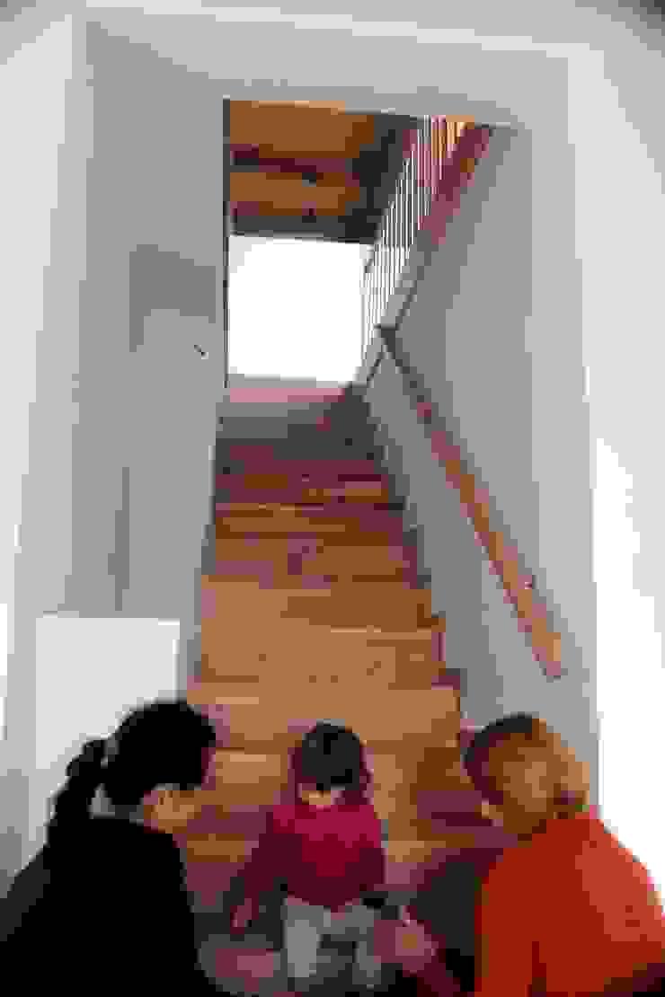 Organica Design & Build Pasillos, vestíbulos y escaleras de estilo minimalista Madera Marrón