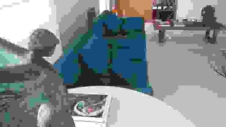 Modern living room by Lucio Nocito Arquitetura e Design de Interiores Modern Wood Wood effect
