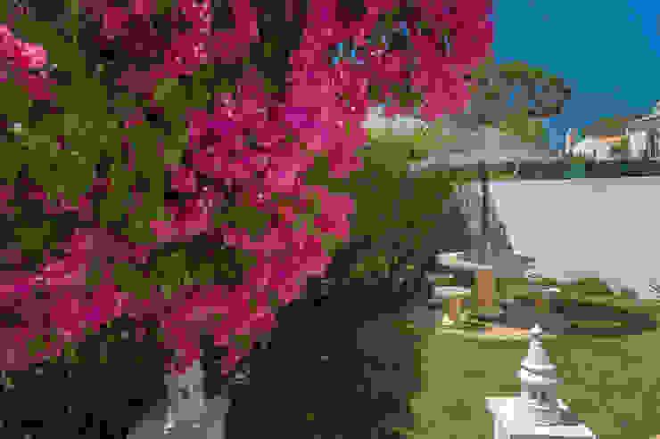 Zenaida Lima Fotografia Classic style garden