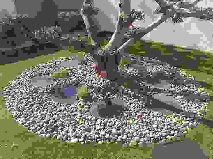 สวน โดย AEN Paysages, โมเดิร์น