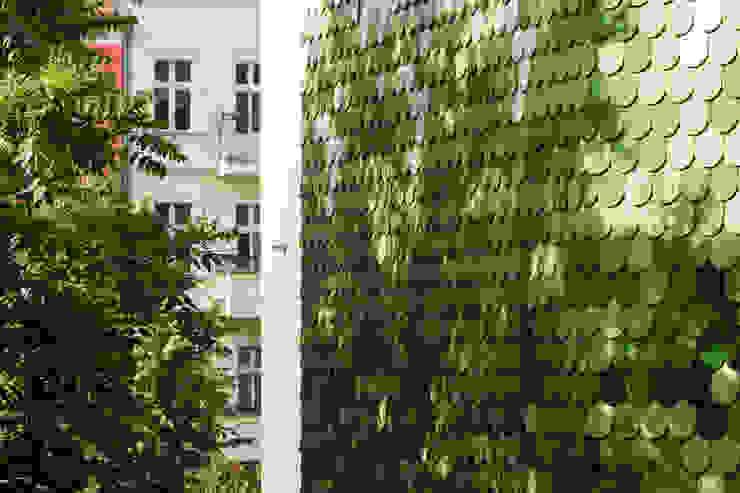 Ziegelfassade brandt+simon architekten Moderne Häuser Keramik Grün