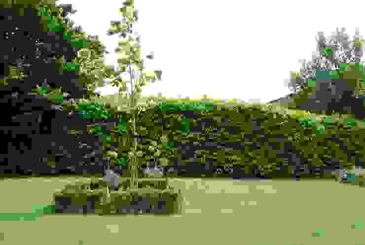 Garden by Aralia,