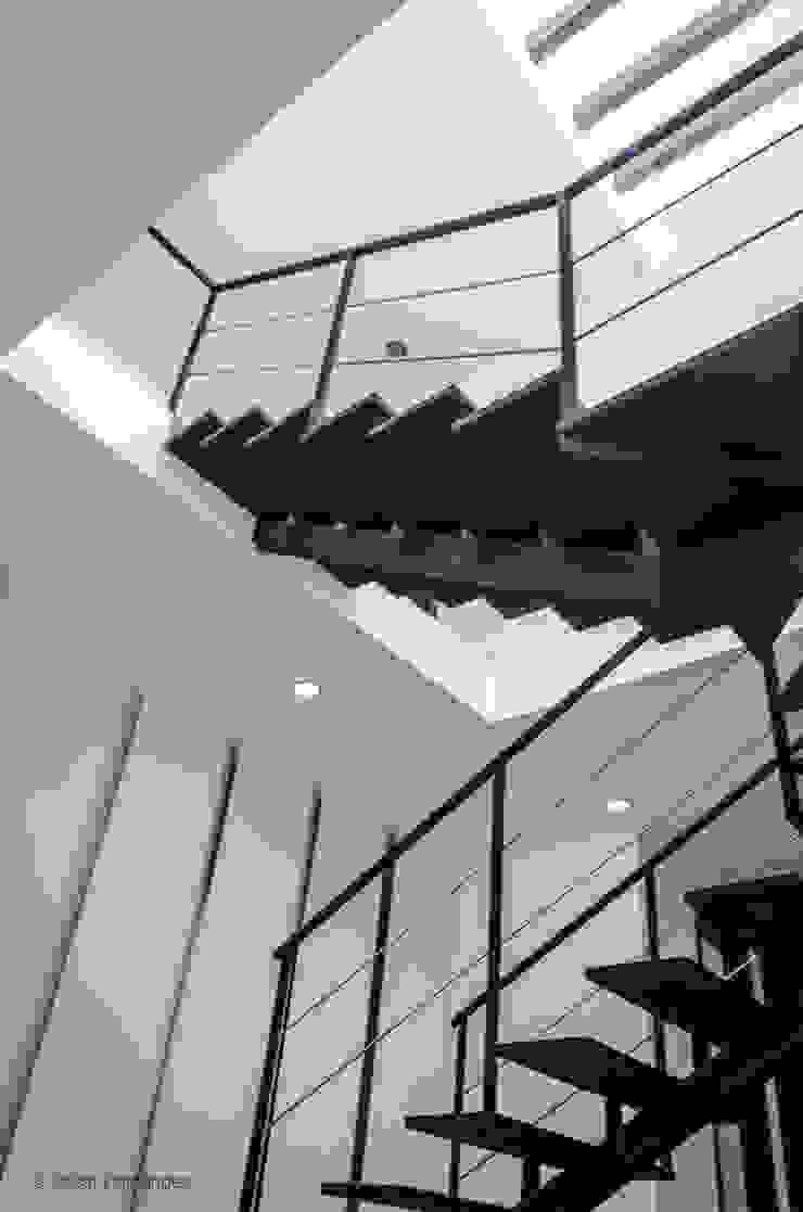 CASA K20 / BLOB BOX STUDIO de Oscar Hernández - Fotografía de Arquitectura