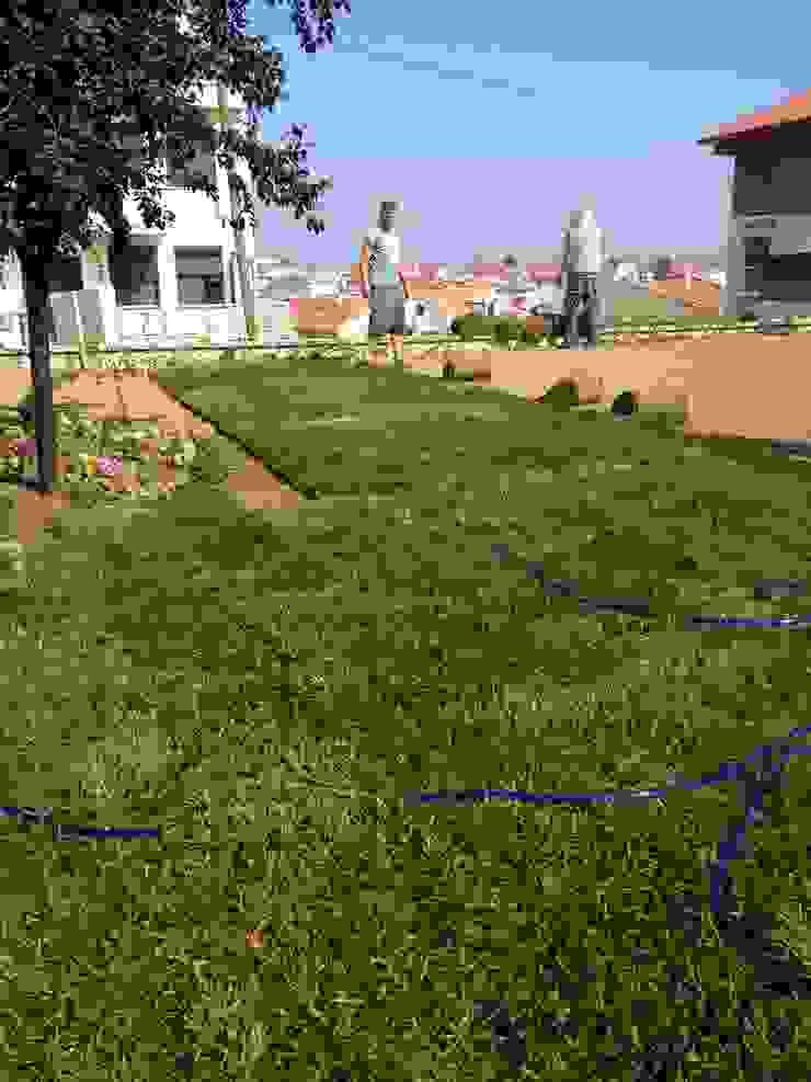 M.Ü KONUTU PEYZAJ UYGULAMASI Modern Bahçe konseptDE Peyzaj Fidancılık Tic. Ltd. Şti. Modern