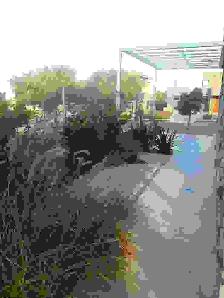 Jardines de estilo moderno de MABEL ABASOLO ARQUITECTURA Moderno