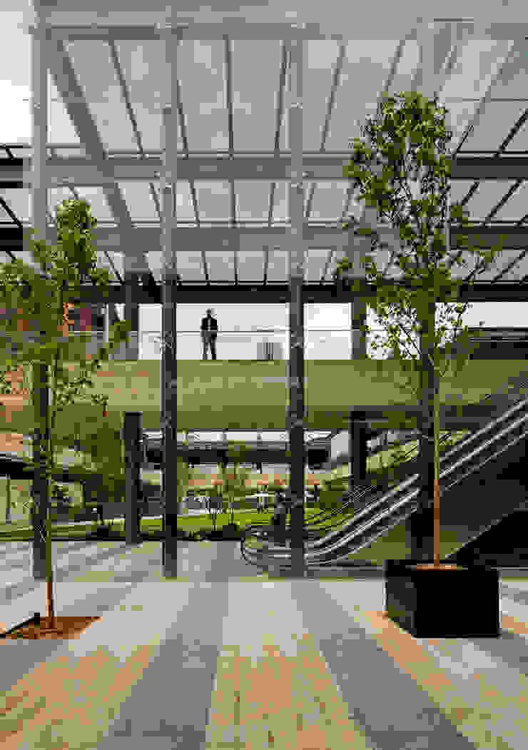 Vía Vallejo Casas modernas de Grow Arquitectos Moderno