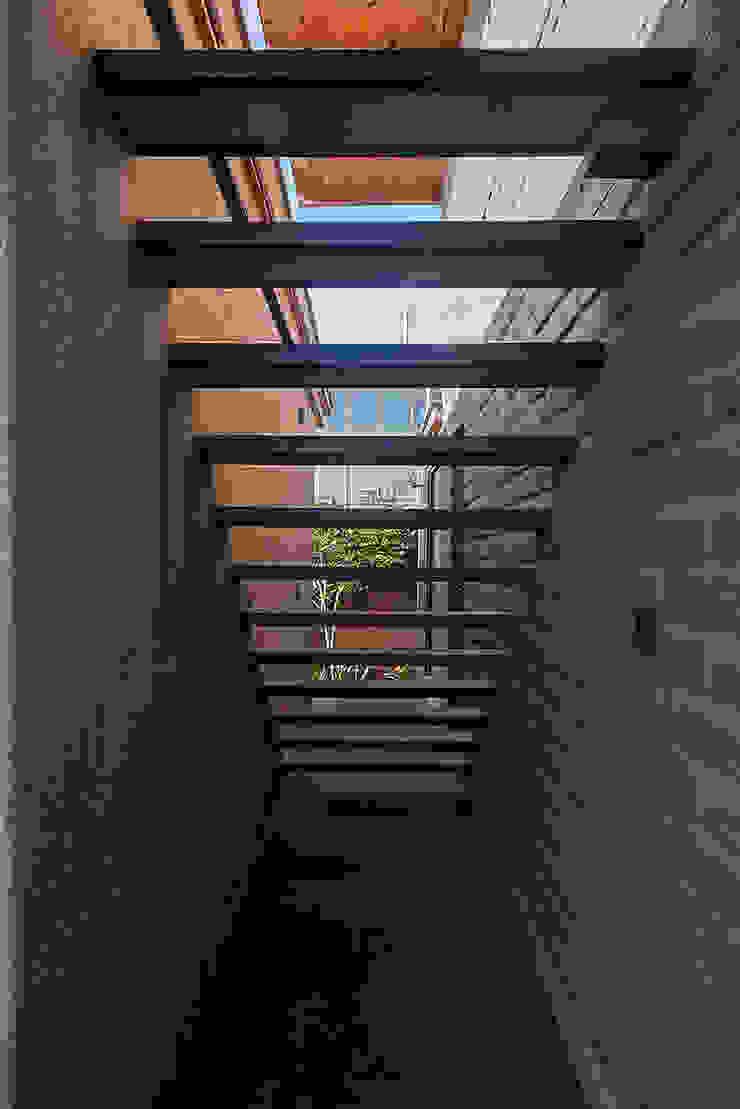 NIDO DE TIERRA Casas rústicas de MORO TALLER DE ARQUITECTURA Rústico Concreto