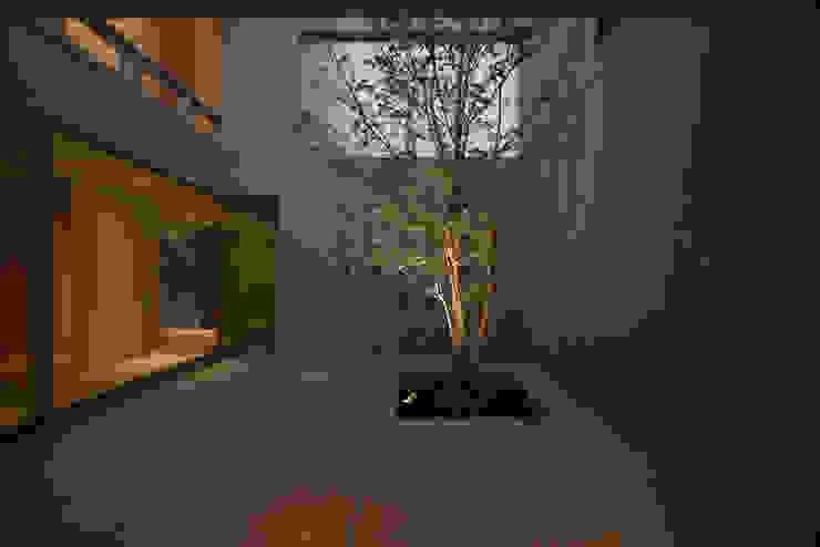 Jardines modernos: Ideas, imágenes y decoración de Atelier Square Moderno Azulejos