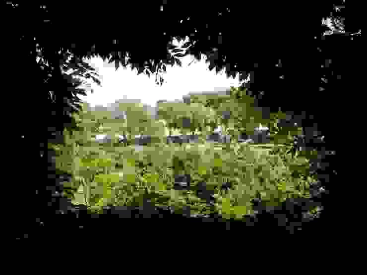 pedro quintela studio Rustic style garden