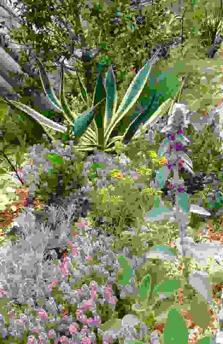 green team co Mediterranean style garden Sandstone Green