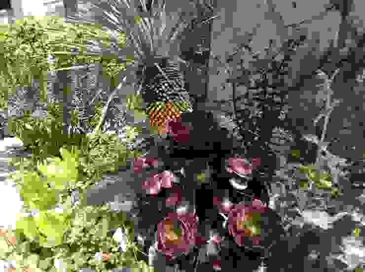 green team co Mediterranean style gardens Wood Purple/Violet