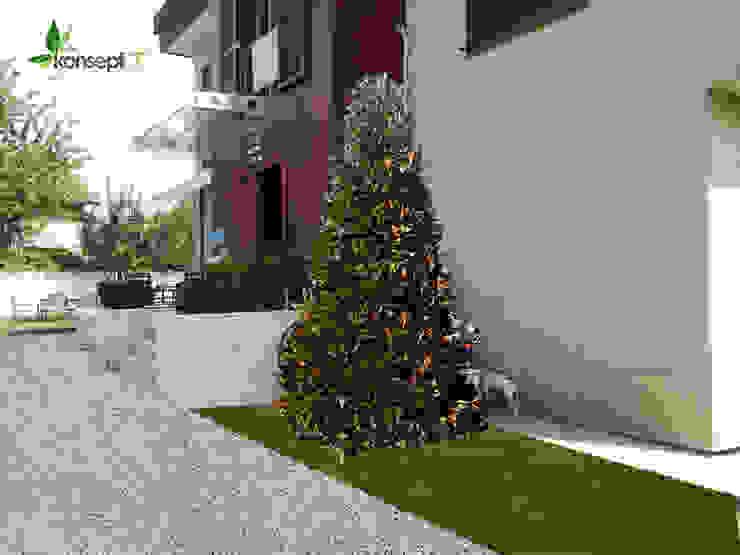 G.M KONUTU PEYZAJ PROJELENDİRME Modern Bahçe konseptDE Peyzaj Fidancılık Tic. Ltd. Şti. Modern