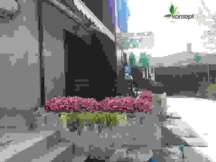 Jardines modernos: Ideas, imágenes y decoración de konseptDE Peyzaj Fidancılık Tic. Ltd. Şti. Moderno
