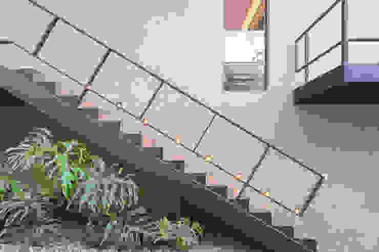 Pasillos, vestíbulos y escaleras modernos de Joana França Moderno