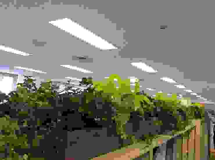 green team co Офісні будівлі