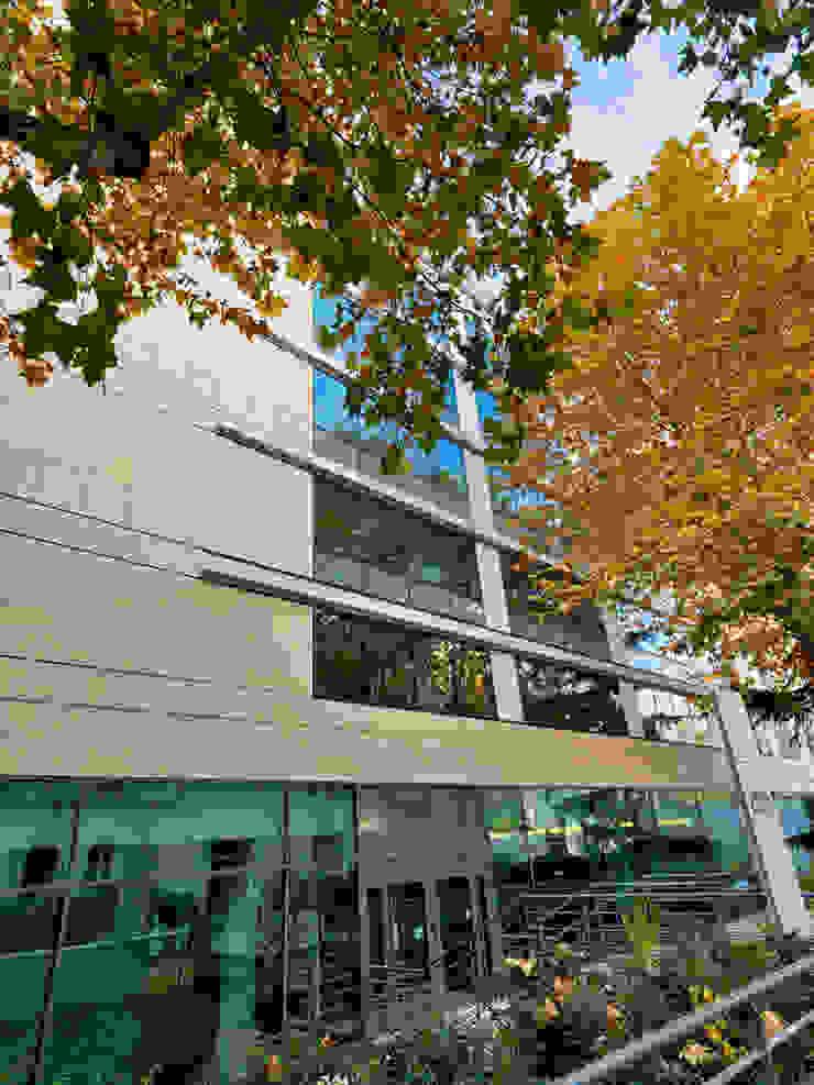 Grassi Pietre srl Modern office buildings Stone White
