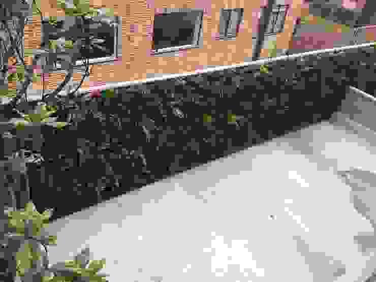 jardin vertical Jardines de estilo moderno de ESPACIO PENSADO S.A.S Moderno