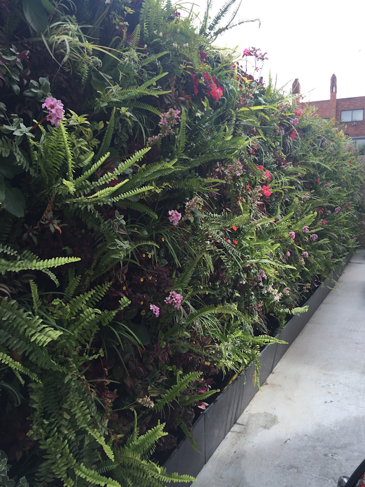 jardin vertical edificio Euler Jardines de estilo moderno de ESPACIO PENSADO S.A.S Moderno