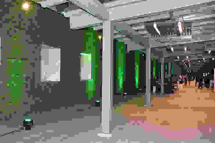 Bares y clubs de estilo moderno de Ranka Follaje Sintético Moderno
