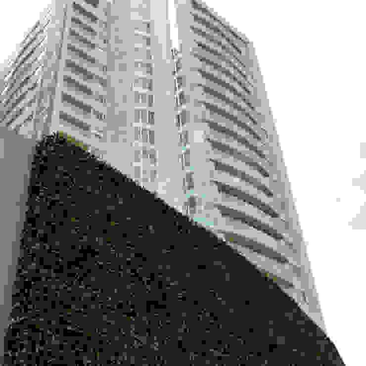 Edificios de oficinas de estilo moderno de Ranka Follaje Sintético Moderno