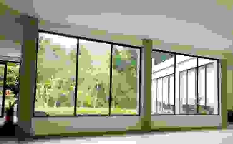 Casa La Vega Puertas y ventanas de estilo moderno de Vertice Oficina de Arquitectura Moderno