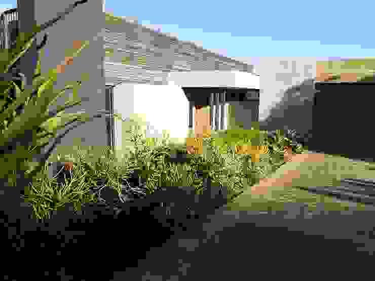 Forest View Garden by Simon Clements: Garden & Landscape Design