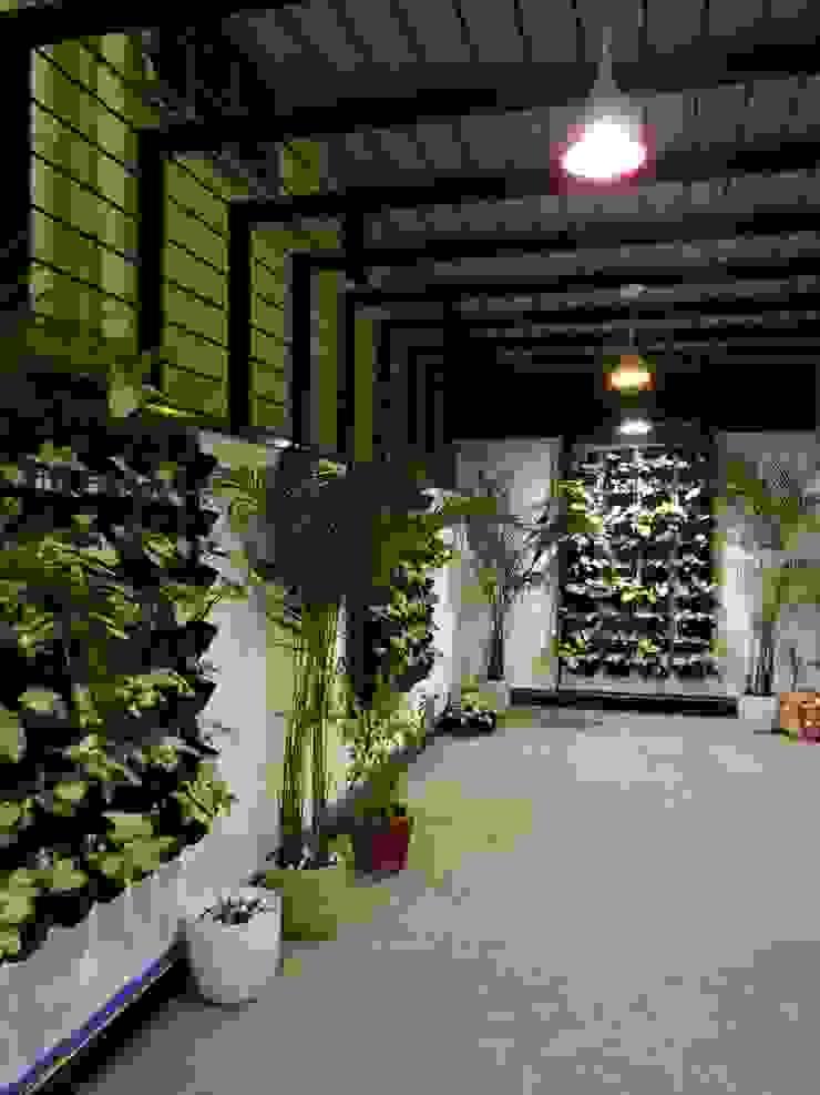 Indoor Landscape Modern garden by Hasta architects Modern