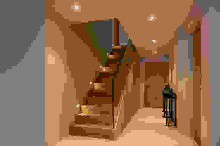 Modern Corridor, Hallway and Staircase by BAUR WohnFaszination GmbH Modern Wood Wood effect