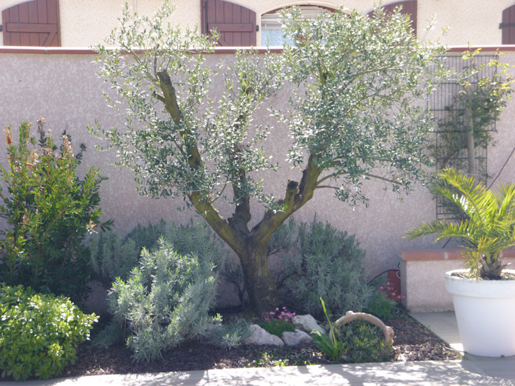Mediterranean style garden by LES PAYSAGES URBAINS Mediterranean