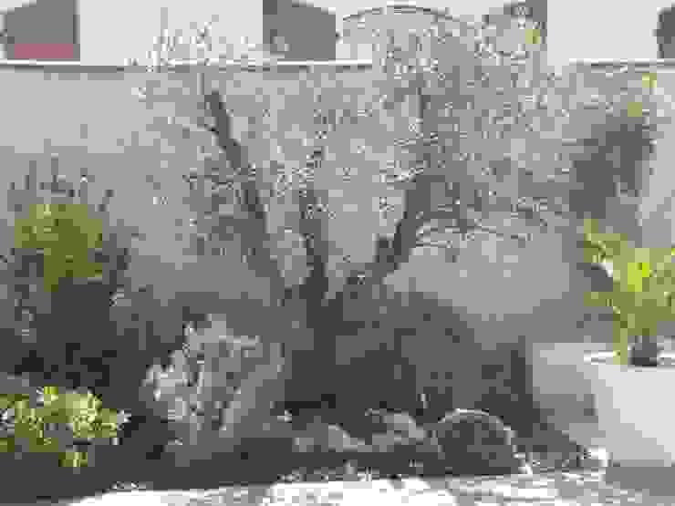 Jardines de estilo mediterráneo de LES PAYSAGES URBAINS Mediterráneo