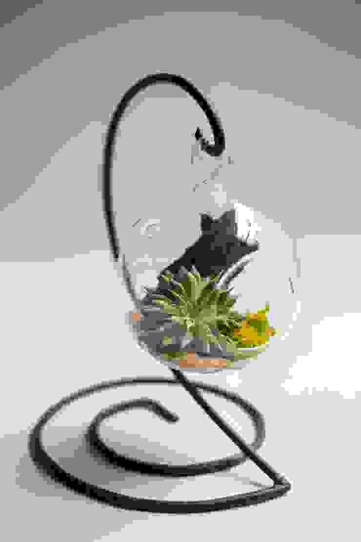 Terrariums: modern  by Your Green Canvas,Modern Glass