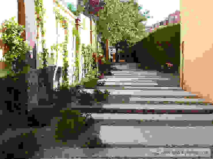Minimalist style garden by Taller de Paisatge Minimalist