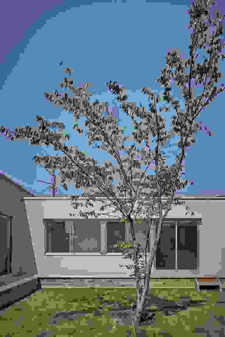 toki Architect design office Modern style gardens