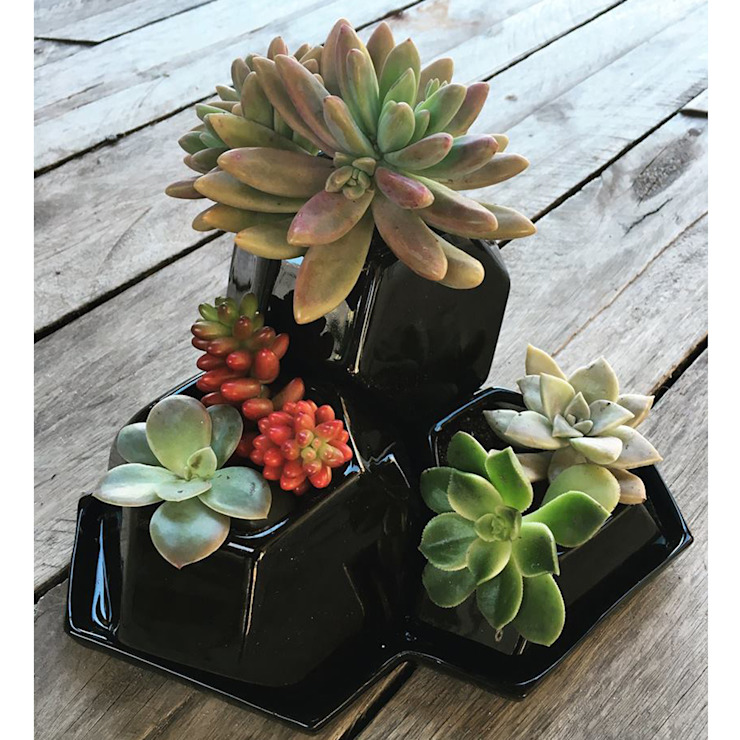 Bizcocho HouseholdPlants & accessories Pottery Black