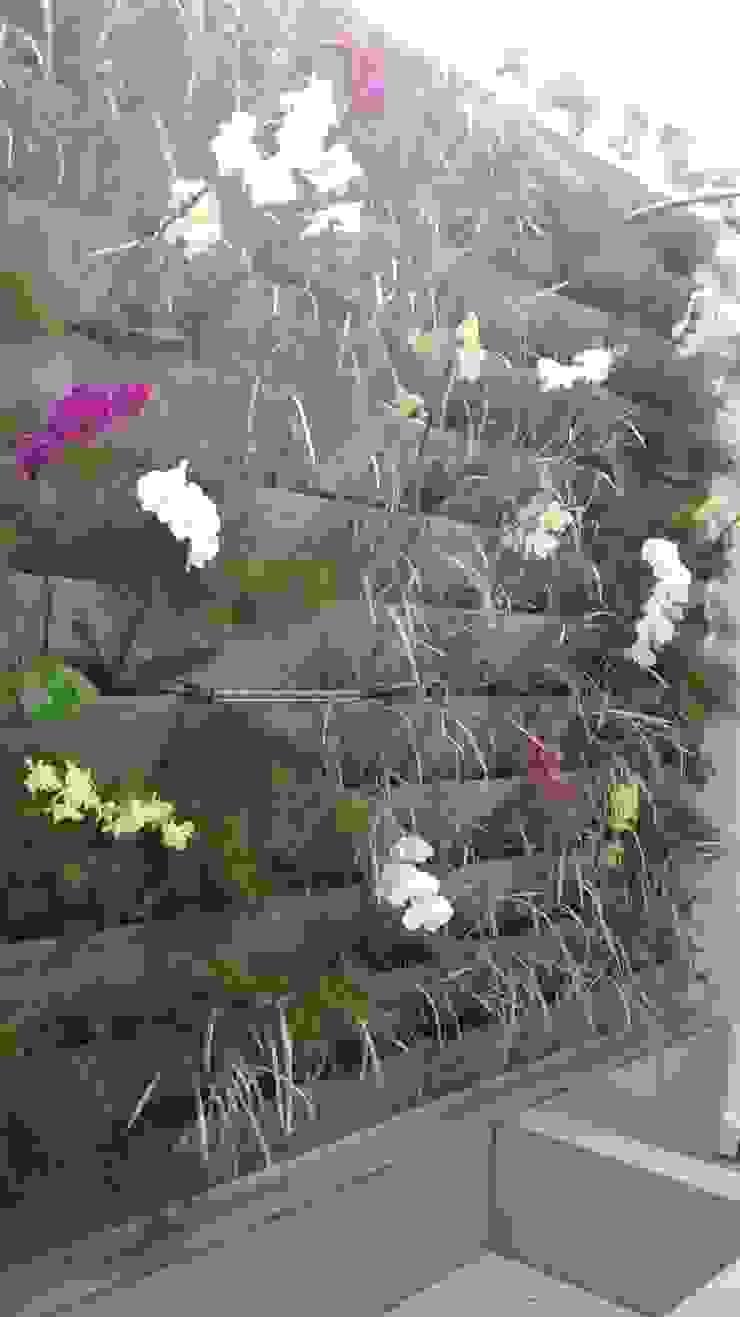 Borges Arquitetura & Paisagismo Garden Plants & flowers