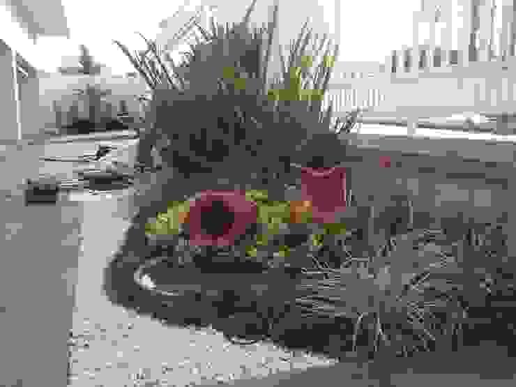 Jardins modernos por Borges Arquitetura & Paisagismo Moderno