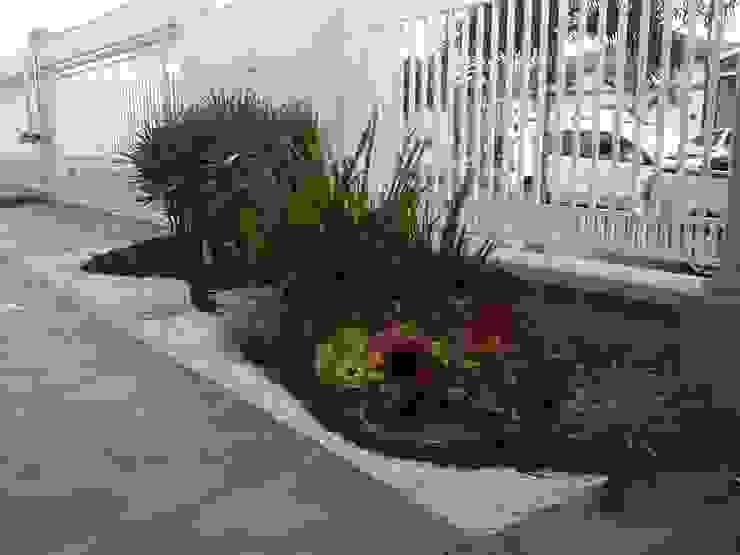Jardines de estilo  por Borges Arquitetura & Paisagismo