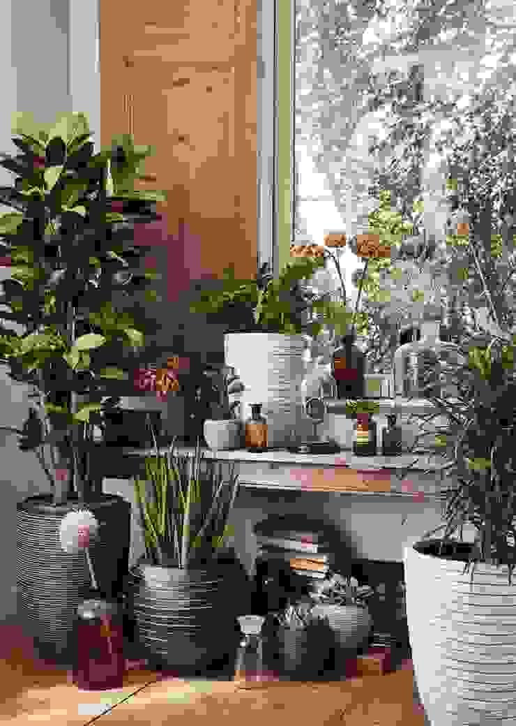 Capi Nature Indoor - Mix van potten van Capi Europe Landelijk