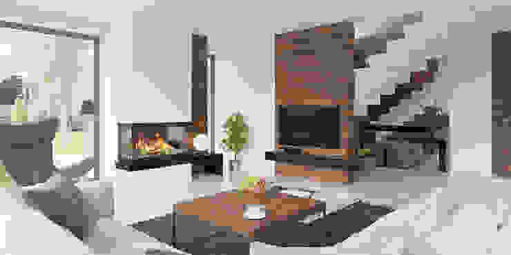 غرفة المعيشة تنفيذ HomeKONCEPT | Projekty Domów Nowoczesnych, حداثي