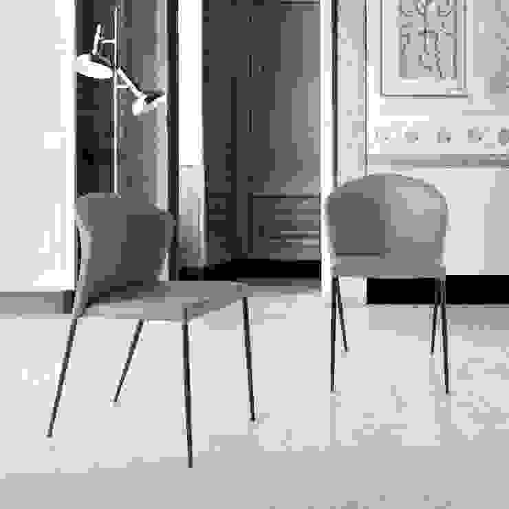Cadeiras modernas Modern Chairs www.intense-mobiliario.com CREVEN por Intense mobiliário e interiores; Minimalista