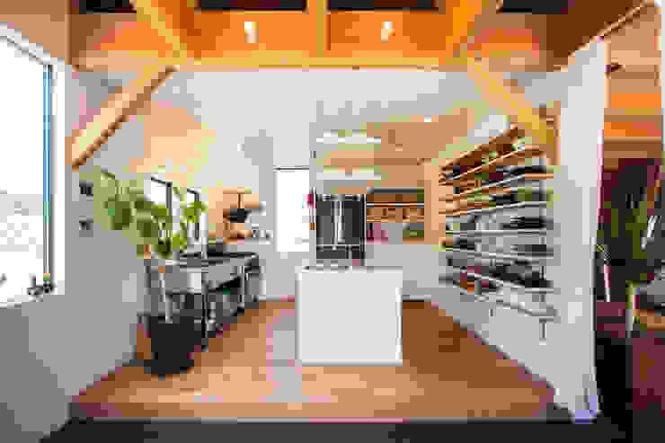 TMS の ZOYA Design Office