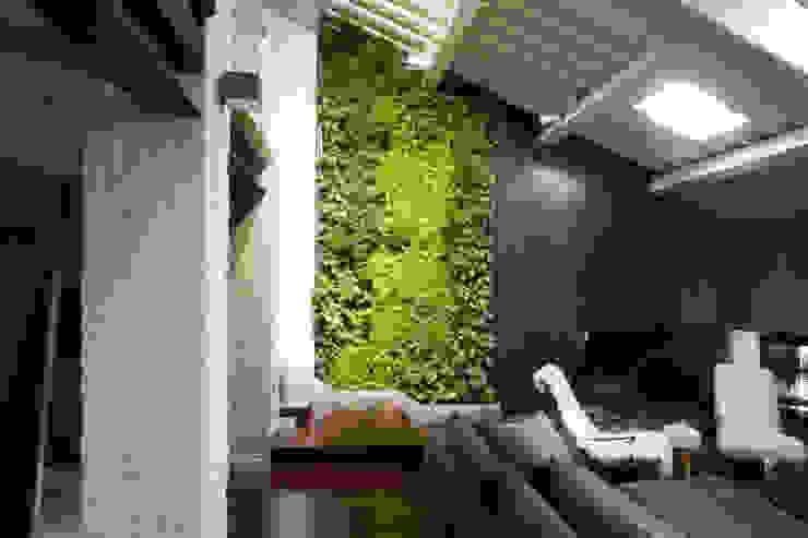 Giardino verticale Sundar Italia in moderno loft homify Soggiorno moderno